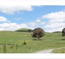 Blayney Wind Farm in NSW Sticker
