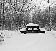 Winter Picnic by Keri Harrish