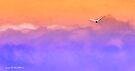 Dream flight 002 by Karl David Hill