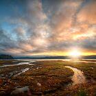 Sunday Morning Marsh by Mari  Wirta