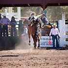 The Rodeo by Timothy L. Gernert