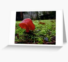 Red Wax cap Greeting Card