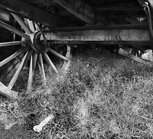 Wagon Wheel - Monte Christo Homestead, Junee NSW Australia by Bev Woodman
