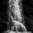 Waterfall in Lake Tahoe by Jeffrey  Sinnock