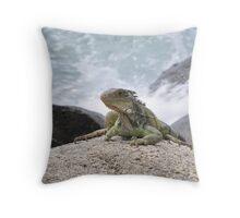 Caribbean Wonder Throw Pillow