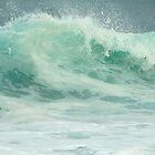 One Love, One Wave by Angelika Sielken