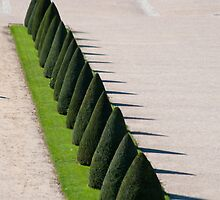 The garden at Versailles Palace seen through old glass-5 by Michael Brewer