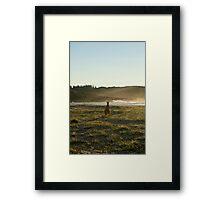 Kangaroos 2 Framed Print