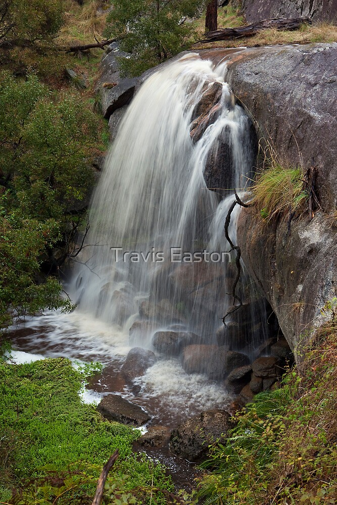 New Falls by Travis Easton