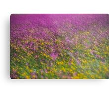 7 ★★★★★ . Frühling in den Alpen . The Flowers of the Alps . The Dachstein Mountains . Austria. Doktor Faustus. Favorites: 3 Views: 554 . Danke ! Metal Print