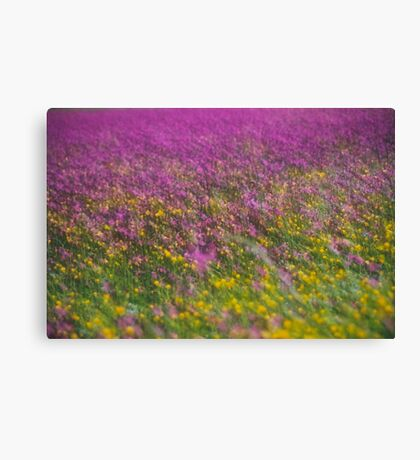 7 ★★★★★ . Frühling in den Alpen . The Flowers of the Alps . The Dachstein Mountains . Austria. Doktor Faustus. Favorites: 3 Views: 554 . Danke ! Canvas Print