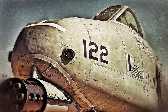 A-10 Warthog by Kingstonshots
