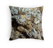 Spotted Rock Throw Pillow