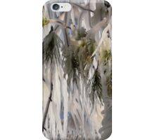 Deep Freeze iPhone Case/Skin