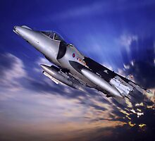 Royal Air Force Harrier by Bob Martin