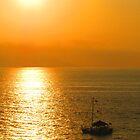 Sunset Tour in a Yellow Golden Ocean - Tour de la puesta en uns Océano Amarillo Dorado by PtoVallartaMex