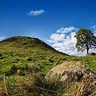 The Tree at Sycamore Gap by b8wsa
