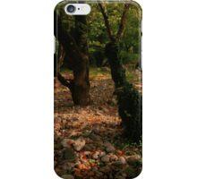 waterless iPhone Case/Skin