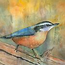 Bird On A Log by arline wagner