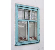 Karakul window - double glazing and red plastic flowers Photographic Print