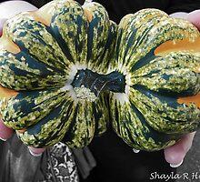 Fall Gourd by RebekahShay