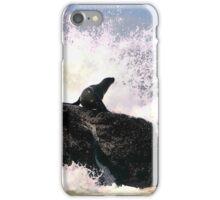 Seal iphone case iPhone Case/Skin