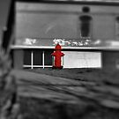 Fire Hydrant #2  (please view larger, its funner that way~!) by Brenda Dahl