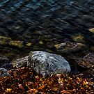 Under These Rocks and Stones by Rebecca Reist