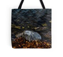 Under These Rocks and Stones Tote Bag