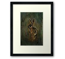 Mad March Hare Framed Print