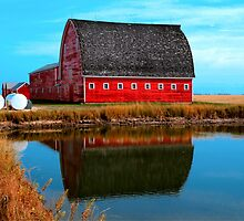 Pond Reflections by Larry Trupp