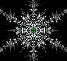Winter Star by Ross Hilbert