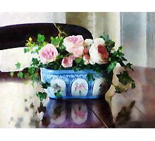Pink Roses and Ivy Photographic Print