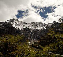 Mountain scene south island New Zealand by Tony Theobald