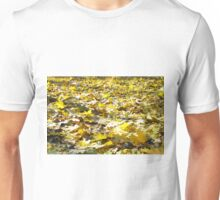 Selective focus on the yellow fallen autumn maple leaves Unisex T-Shirt
