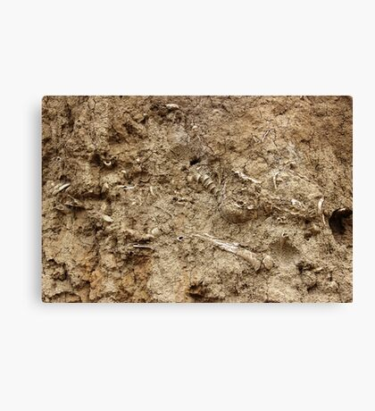 Human Remains Canvas Print