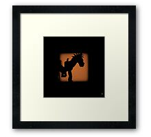 Shadow - Bullseye Framed Print