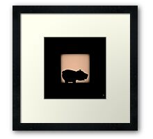 Shadow - Ham Framed Print