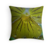 Water diamonds Throw Pillow