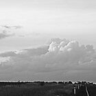 Summer Storm in B&W by Candice84