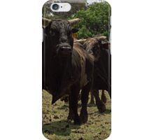 Rodeo Bulls iPhone Case/Skin