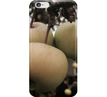 The three witches iPhone Case/Skin