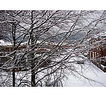 A Snowy Morning in January Photographic Print