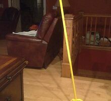 Standing Broom ~ Not Photoshop by barnsis