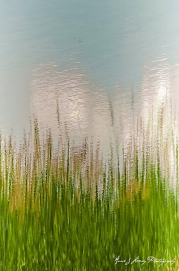 Spring Reflections by Annie Lemay  Photography