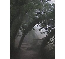 Mysterious Path Photographic Print