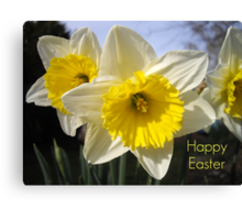Easter Daffodils Canvas Print