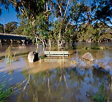 Murrumbidgee Floods - Front Row Seat by bazcelt