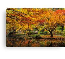 Ornamental Lake Canvas Print