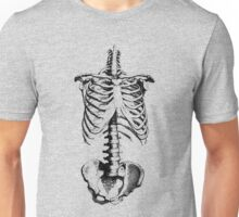 Sleleton drawing of ribs, torso and pelvis Unisex T-Shirt
